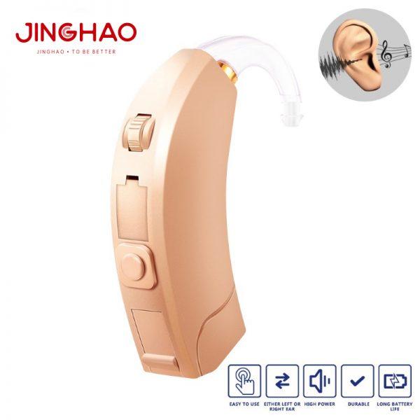 D10-programmable hearing aids